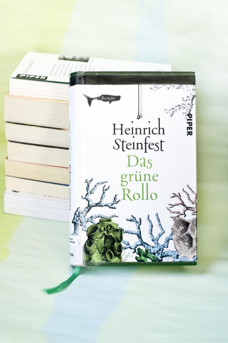 01_book_buch_dasgruenerollo_steinfest_visitandstay_photography