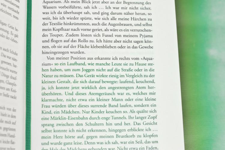 02_book_buch_dasgruenerollo_steinfest_visitandstay_photography