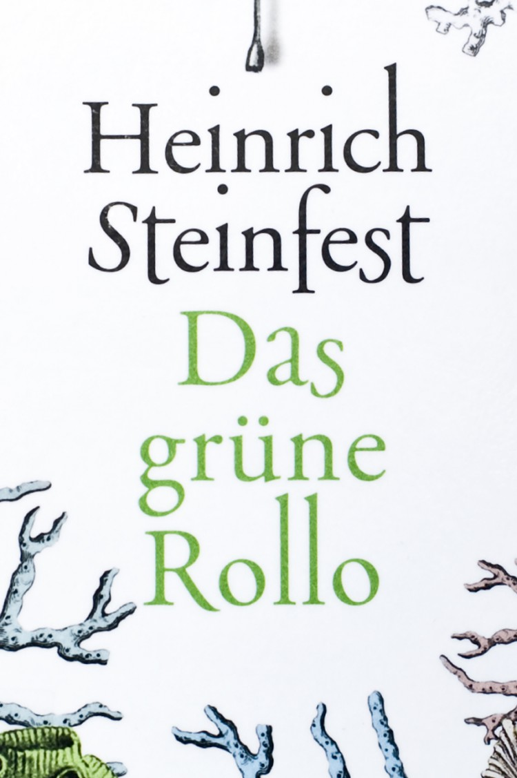 03_book_buch_dasgruenerollo_steinfest_visitandstay_photography